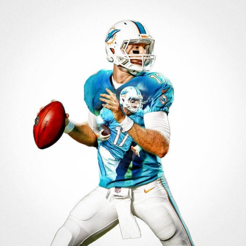 Miami Dolphins Ryan Tannehill Football Wall Posters with 6 Sizes Unframed